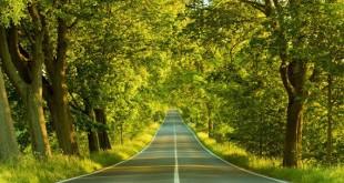 ucretsiz-yol-izninin-yillik-izin-suresine-eklenmesi